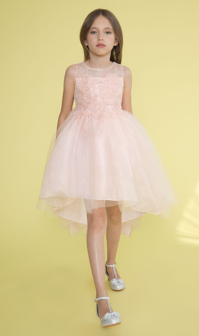 42d6cb5a871 ... BLUSH High-Low Tulle Dress with Beaded and Embroidered Bodice Larger  Photo