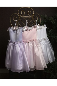 Classical Satin and Organza Dress