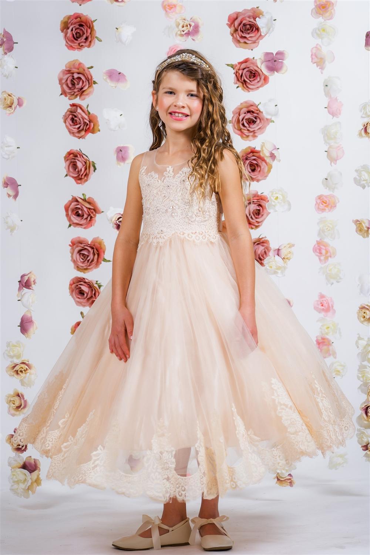 82506389fcb ... Appliqué Illusion Bateau Dress Larger Photo