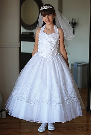 Dazzling Embroidered Organza Dress With Halter Top