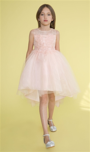 #CAD-758 : BLUSH High-Low Tulle Dress with Beaded and Embroidered Bodice