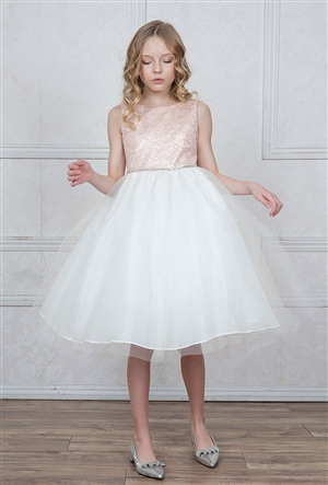 #CAD-770 : Lace Brocade and Tulle Dress